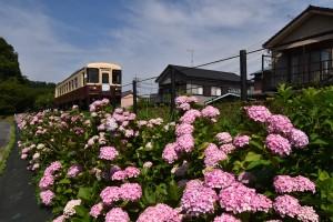 7・2020.06.15二俣本町駅2