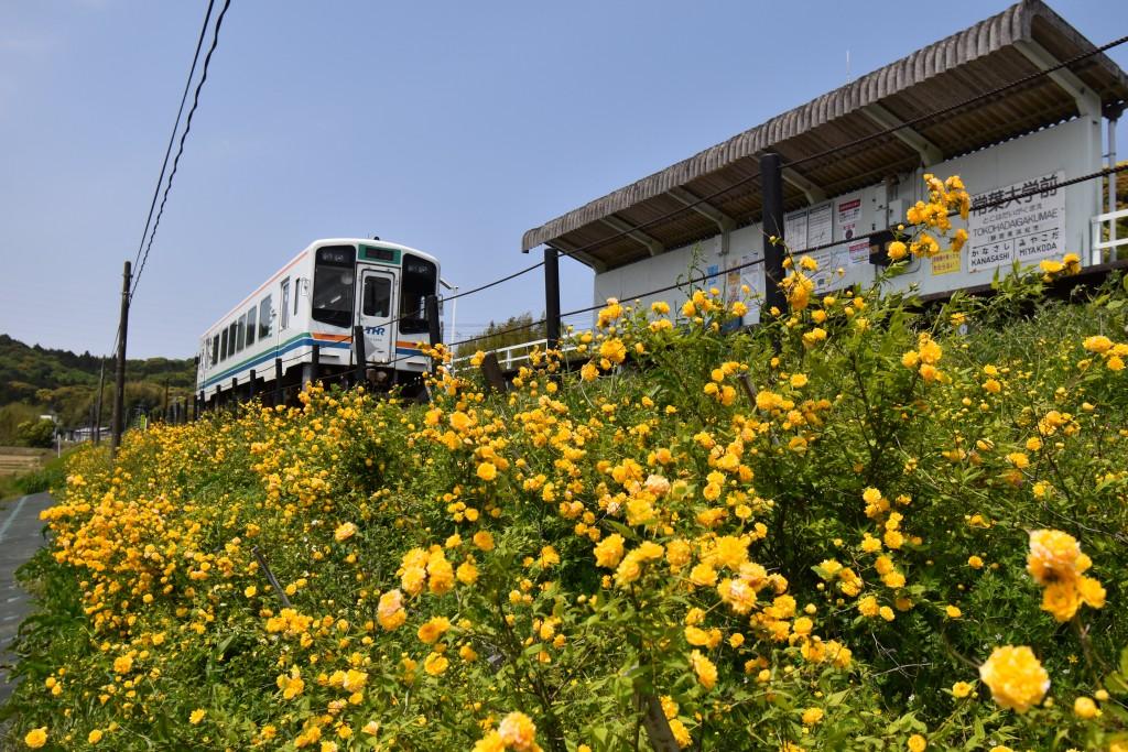 2020.04.27常葉大学前駅.2
