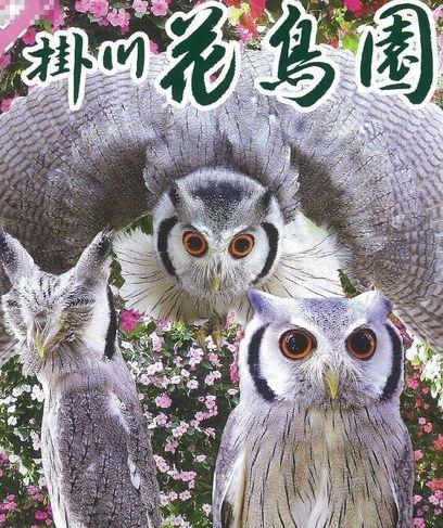 天浜線利用で掛川花鳥園がお得に!