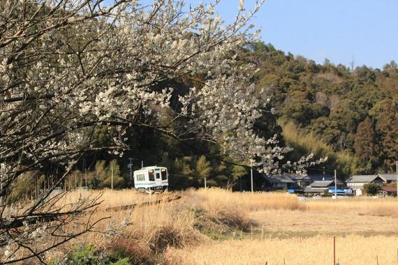 kaminobe-thumb-570xauto-2240.jpg