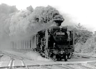 ※蒸気機関車(国鉄二俣線時代)